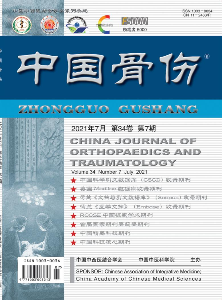 中国骨伤杂志