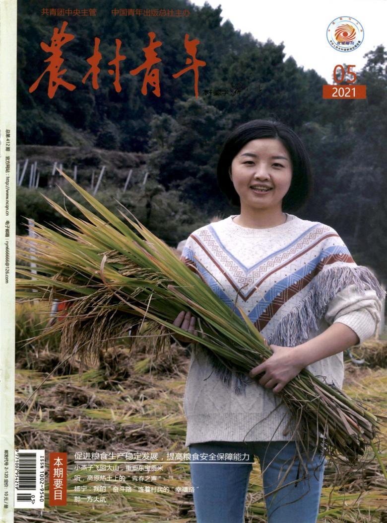 农村青年杂志