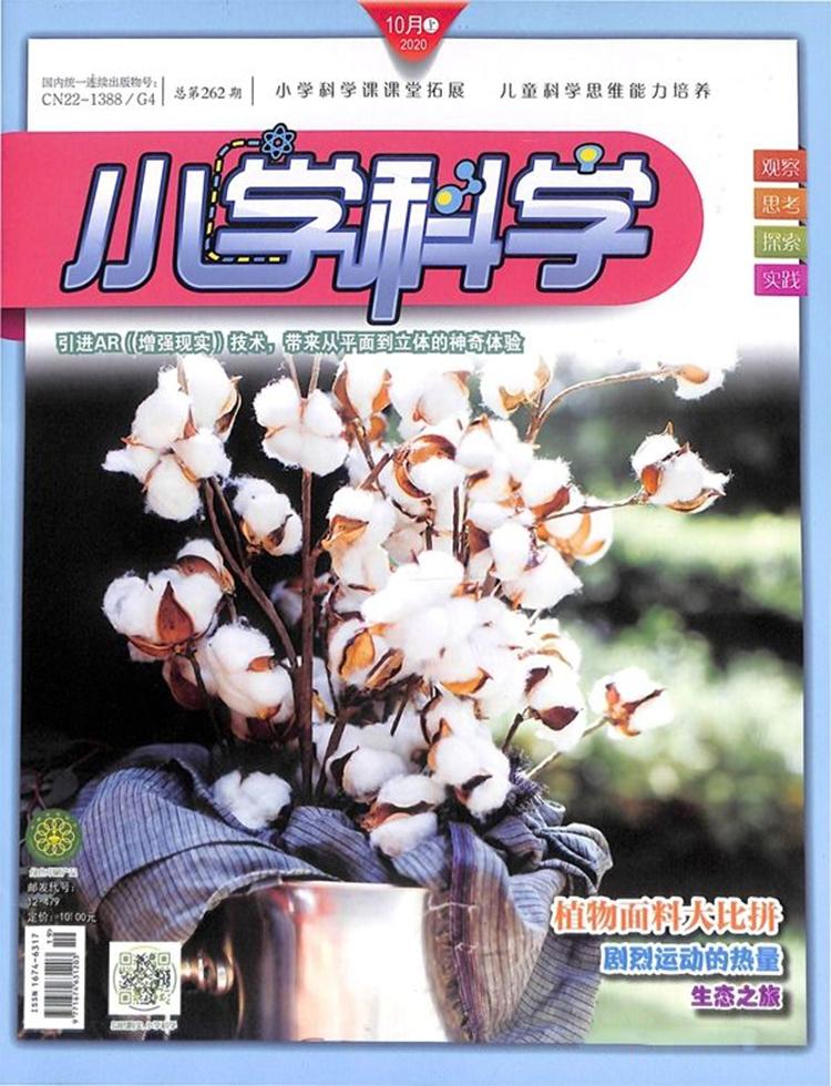 小学科学杂志