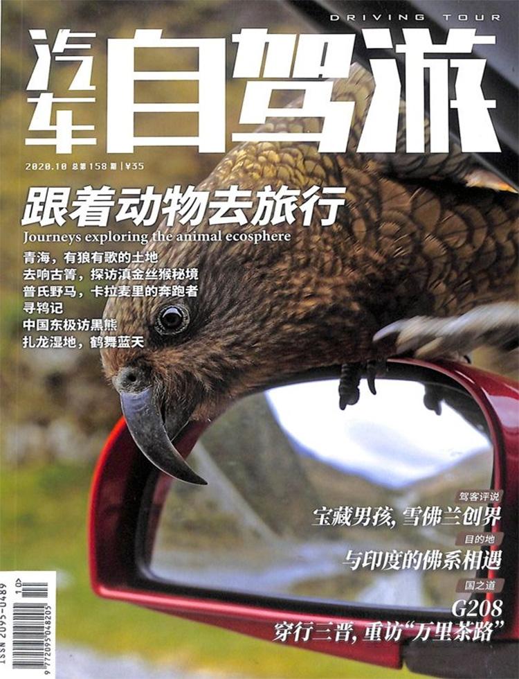 汽车自驾游杂志