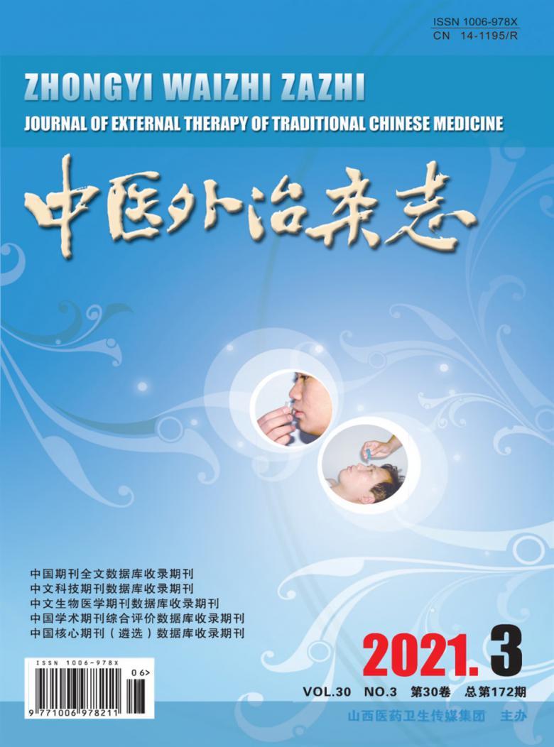 中医外治杂志