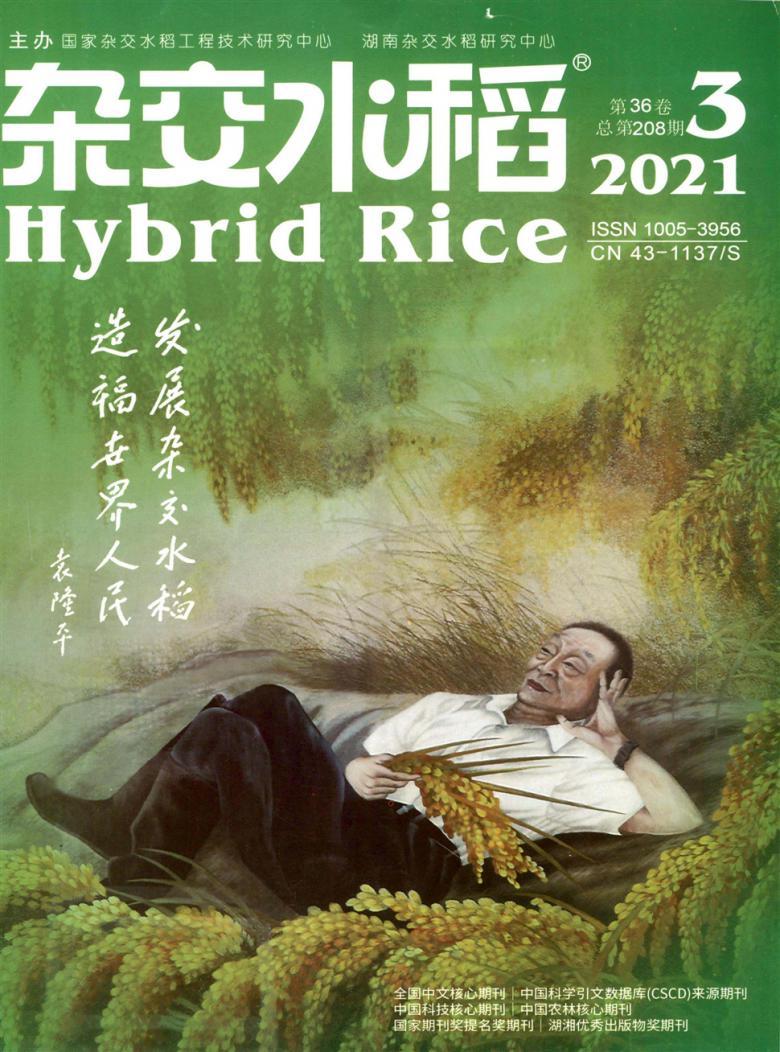 杂交水稻杂志