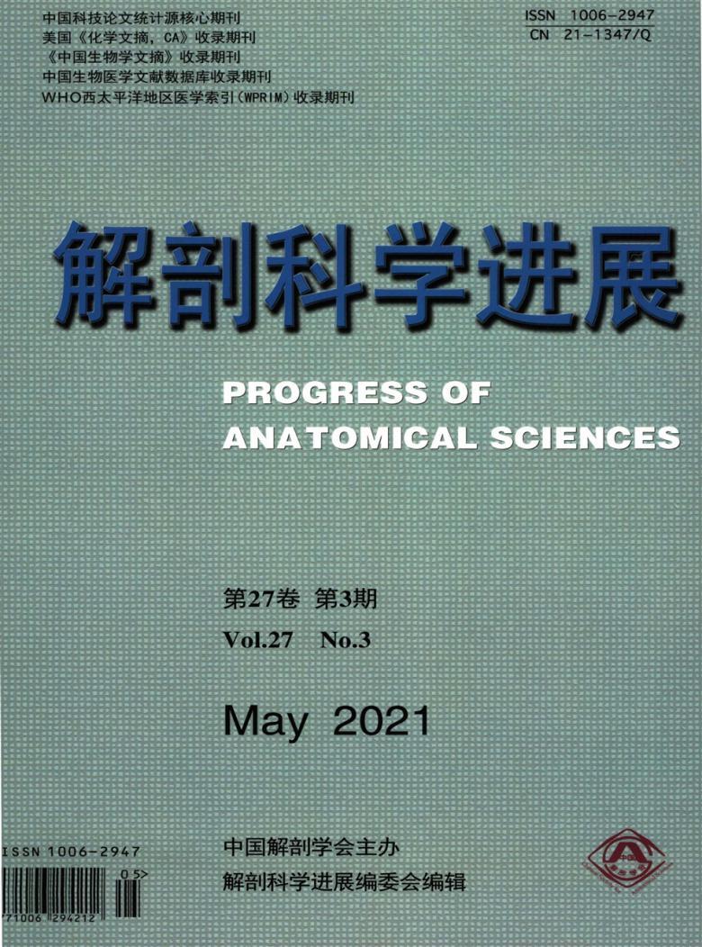 解剖科学进展