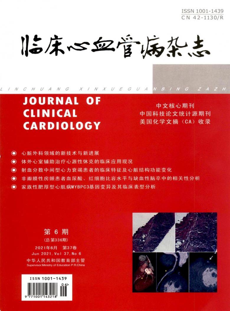 临床心血管病杂志