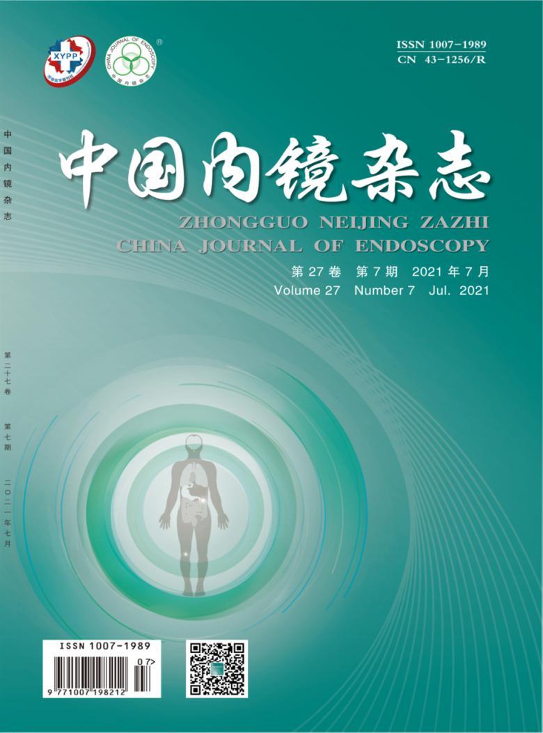 中国内镜杂志