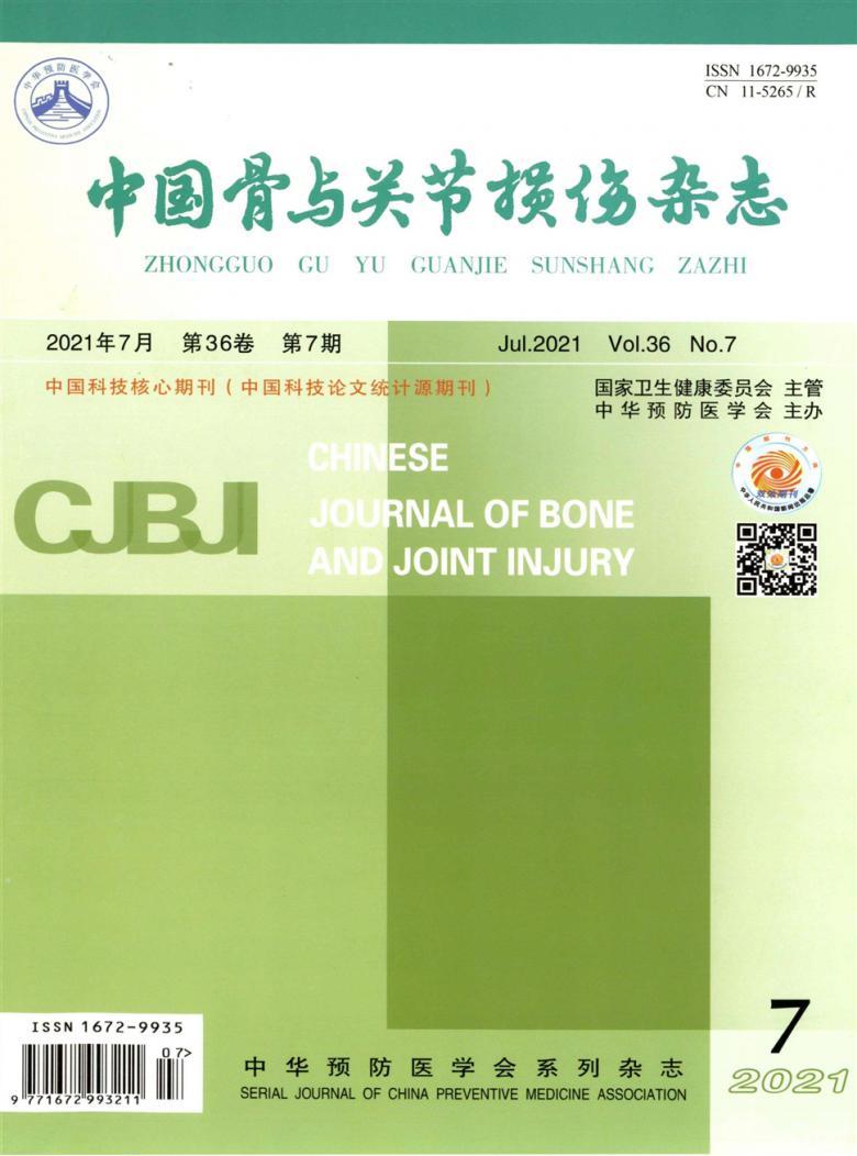 中国骨与关节损伤