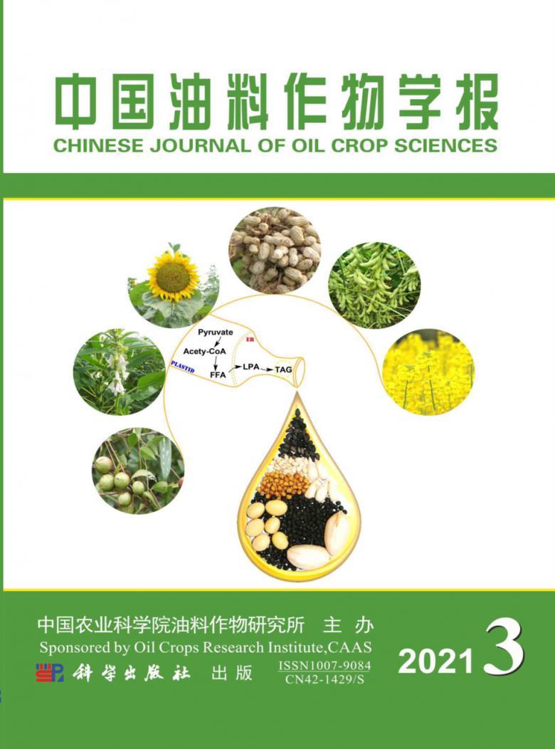 中国油料作物学报杂志