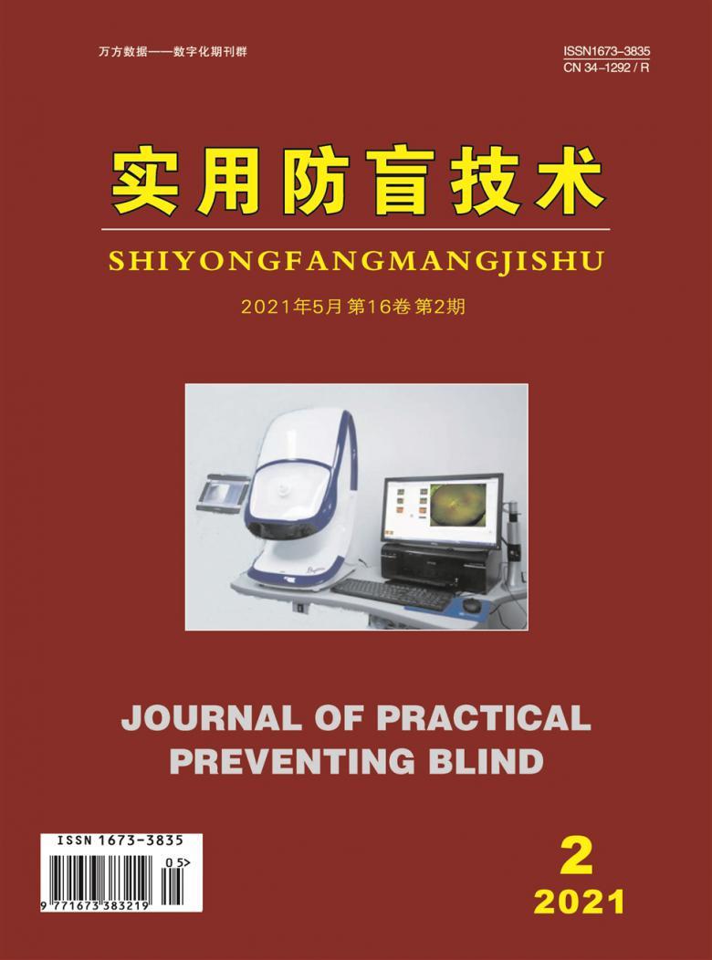 实用防盲技术杂志