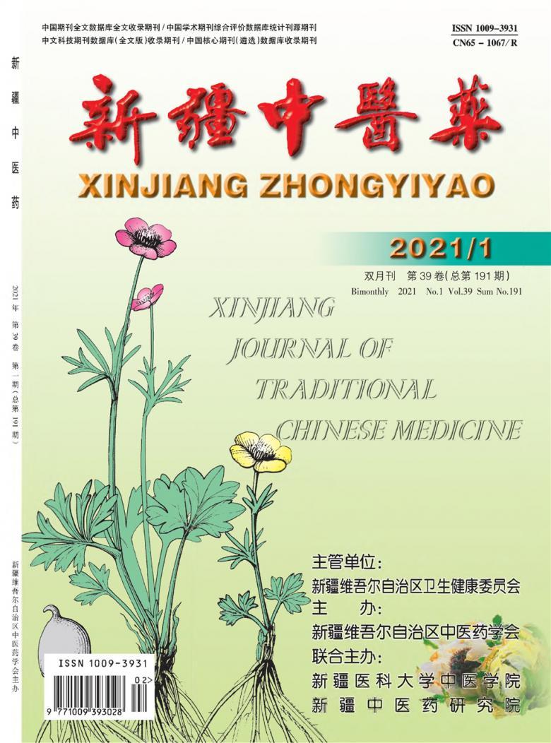 新疆中医药杂志