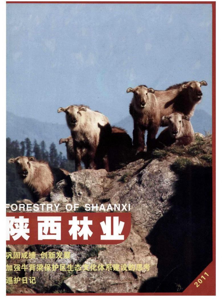 陕西林业杂志