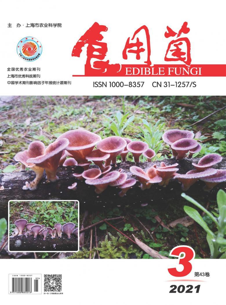 食用菌杂志