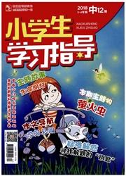 小学生学习指导杂志